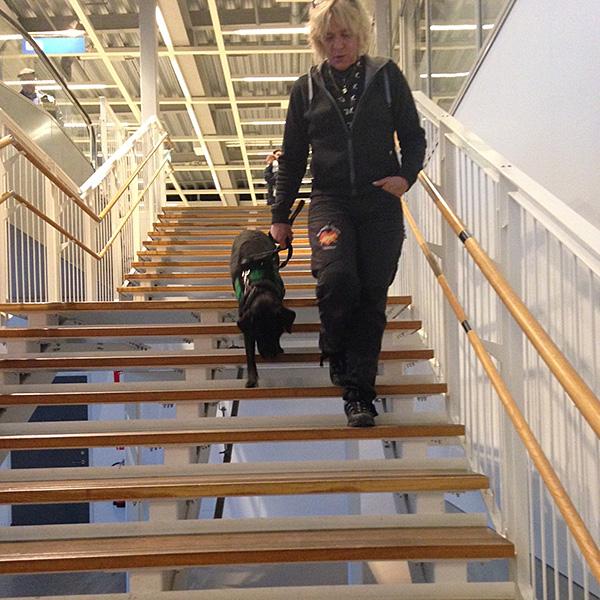 Hundhjälpens Assistanshund instruktörer