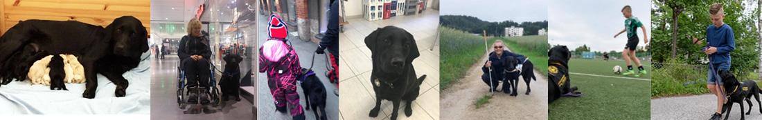 Hundhjälpen i Uppland utbildade ekipage