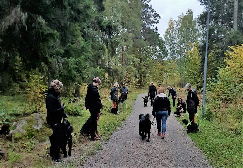 Hundhjälpen i Uppland Instruktörsledd SOCIAL PROMENAD