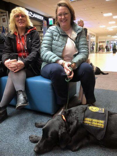 assistanshund hundhjälpen