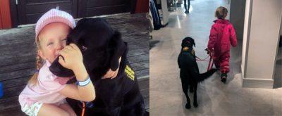 epilepsihund winnie hundhjälpen
