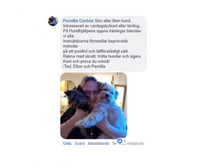 Omdöme Hundhjälpen